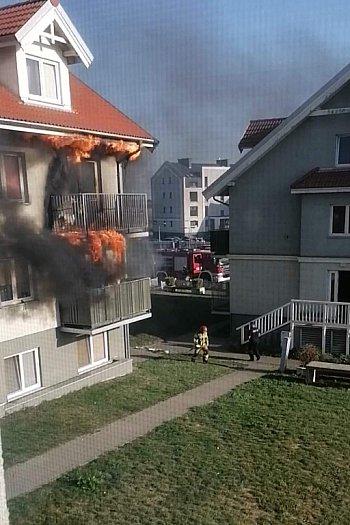 Pożar na tzw. osiedlu Heban-2413